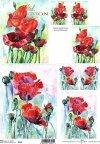 papier-ryżowy-decoupage-maki-łąka-polne-kwiaty-ogród-R0124
