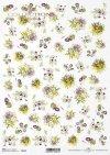 flores, clematis, pensamientos, flores de campo, pequeños elementos*Blumen, Clematis, Stiefmütterchen, Feldblumen, kleine Elemente*цветы, клематис, анютины глазки, полевые цветы, маленькие элементы