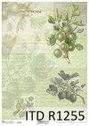 papier decoupage owoce, agrest*Paper decoupage fruit, gooseberry