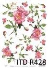 róża, róże, kwiat, kwiaty, kwiatek, kwiatki, bukiet, bukiety, R428
