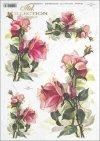 rose, roses, flower, flowers, bouquet, bouquets, R392