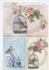 bird in a cage, bird cages, retro style, pastel colors, beautiful background
