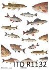 papier decoupage ryby*Paper decoupage fish
