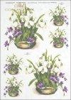spring, flower, flowers, snowdrops, violets, bouquets, bouquets, R329