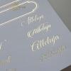 Papier specjalny do scrapbookingu, napisy świąteczne, złote ramki*Special paper for scrapbooking, Christmas inscriptions, golden frames