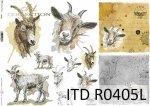 Papier ryżowy ITD R0405L