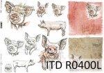 Papier ryżowy ITD R0400L