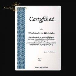 dyplom DS0332 certyfikat