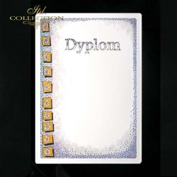 dyplom DS0265