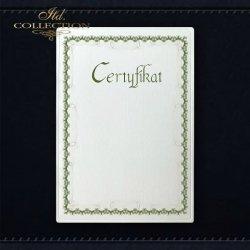 dyplom DS0296 certyfikat