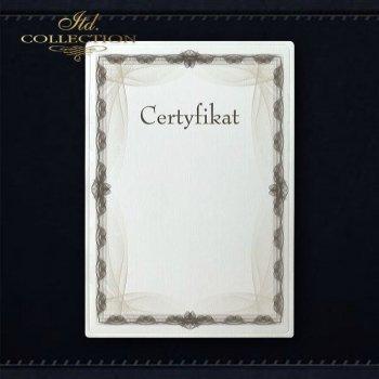 диплом DS0287 универсальный сертификат