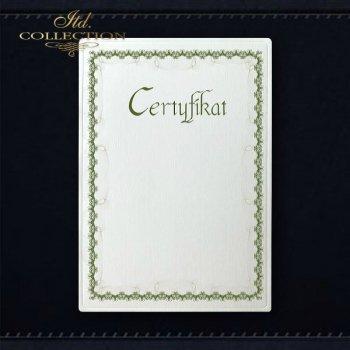 Diplom DS0296 Universelles Zertifikat