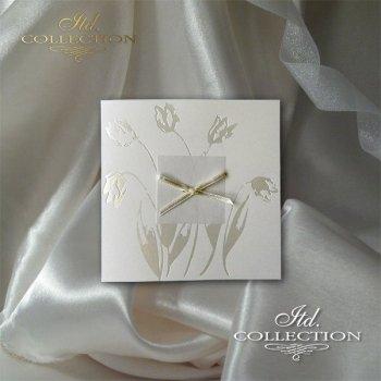Invitations / Wedding Invitation 2014