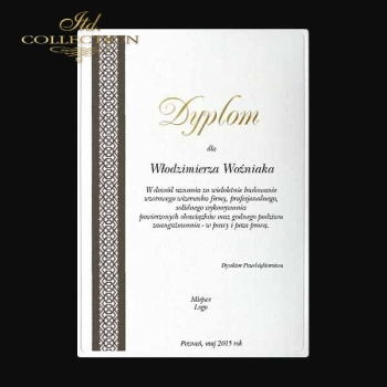diploma DS0341 for business with gold letters