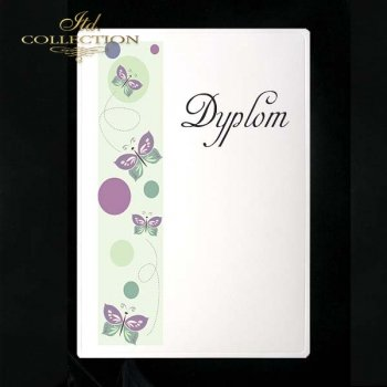 dyplom DS0067