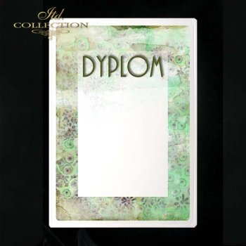 dyplom DS0195