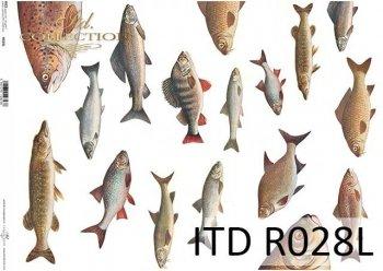 Papier ryżowy ITD R0028L