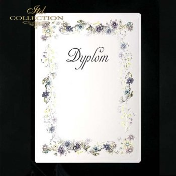 dyplom DS0011