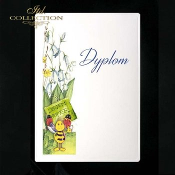 dyplom DS0113