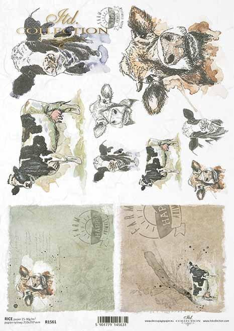 Pascua decoupage papel, granja feliz, vacas*Ostern-Decoupagepapier, glücklicher Bauernhof, Kühe*Пасхальная бумага для декупажа, счастливая ферма, коровы