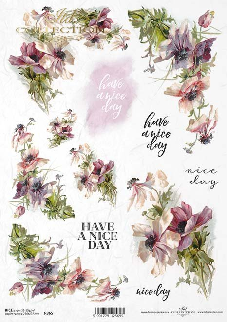 inscription, inscriptions, have a nice day, flowers, field flowers, R865