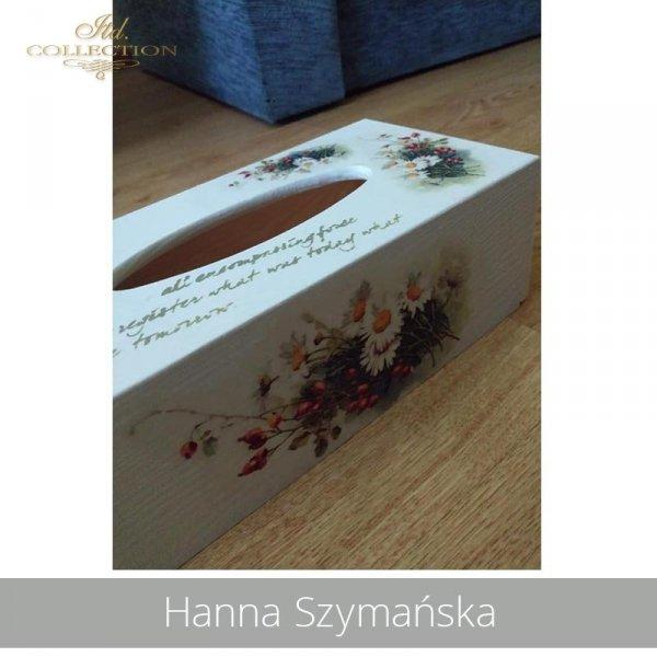 2090503-Hanna Szymańska-R1101-example 05