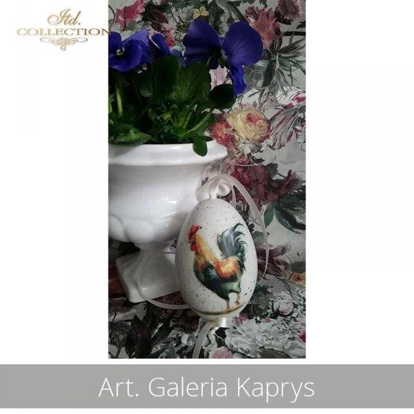 20190423-Art. Galeria Kaprys-R0846 - example 02