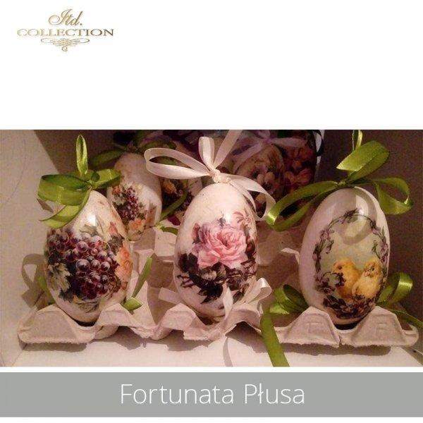 20190424-Fortunata Płusa-R0299 R0748 R1102-example 01