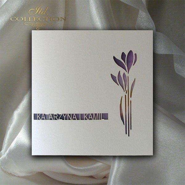 Einladungskarten / Hochzeitskarte 1707