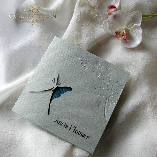 Invitations / Wedding Invitation 1724_18_turquoise
