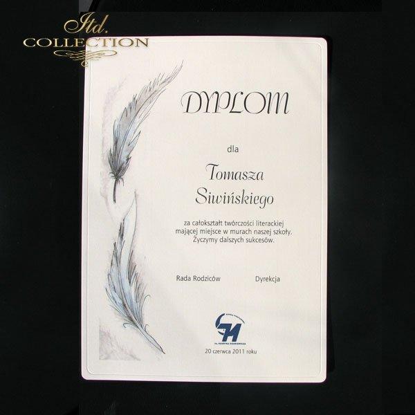 Diploma Pen 1