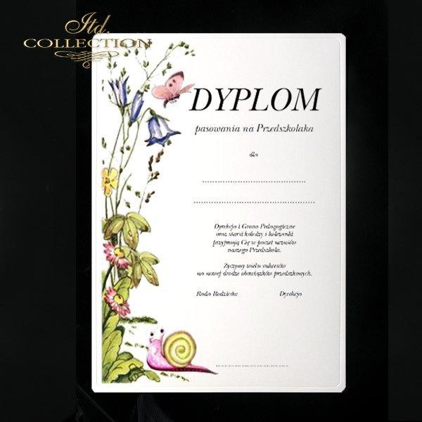 Diplomas Snail