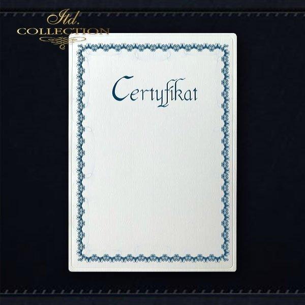 dyplom DS0297 certyfikat