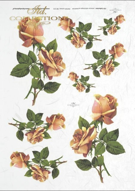 rose, roses, bouquets, flowers, flower