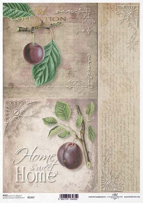 Frutas de decoupage de papel, ciruelas*Бумажные декупажи фруктов, слив*Papier decoupage Früchte, Pflaumen