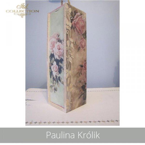 20190425-Paulina Królik-R1170-example 03