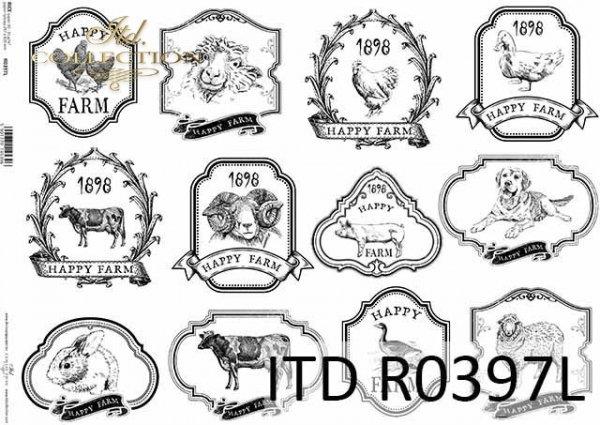 R0397L * kury, kaczki, gęsi, kozy, krowy, owce, barany, psy, świnie, króliki - happy farm