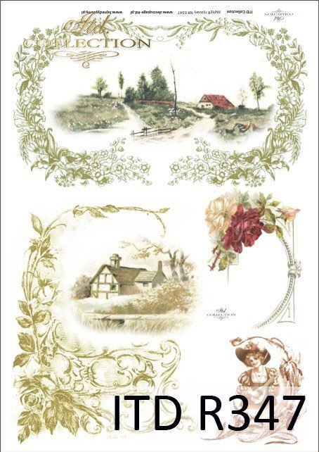 ornamenty, ornamenty roślinne, ramki roślinne, liście, kwiaty, widoczki, R347