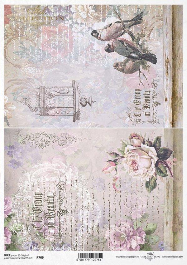 flower, rose, roses, bird, birds, bird cage, writing, retro, background