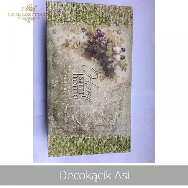 20190430-Decokącik Asi-R0722-A4-ITD 0523-ITD S268-example 01