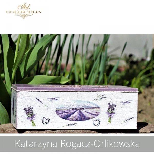 20190423-Katarzyna Rogacz-Orlikowska-R0041 - example 01