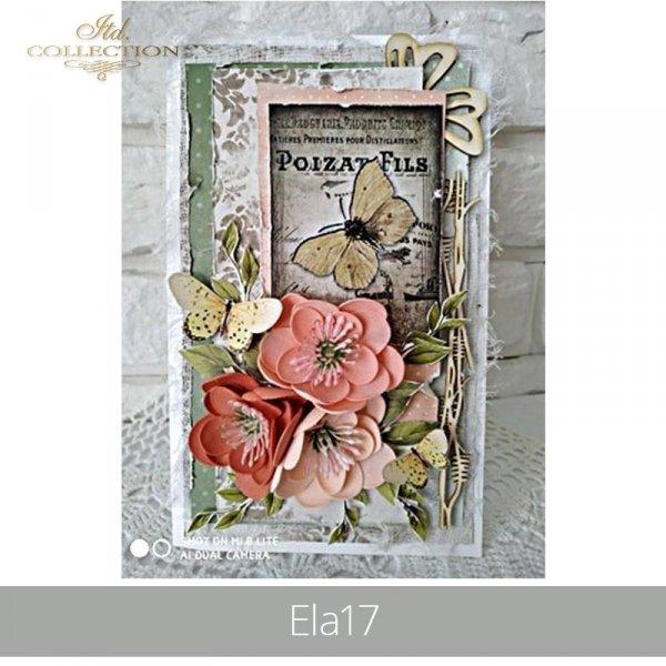 20190506-Ela17-TAG 0045-example 01