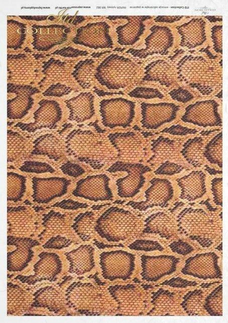 snake, skin, R082