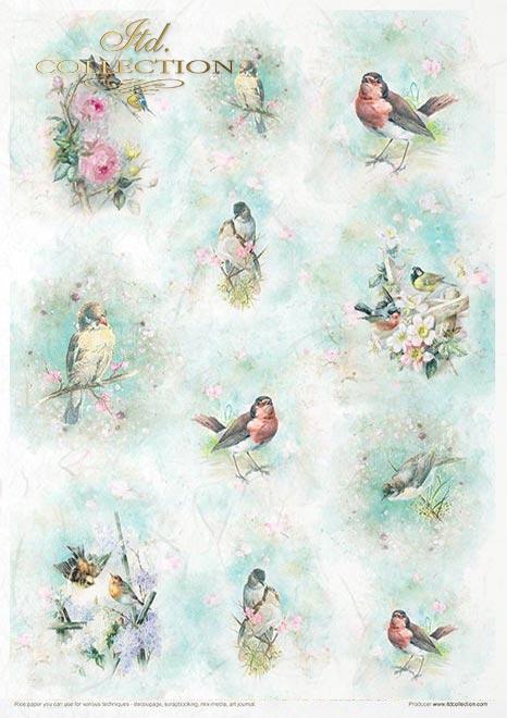 Kreativ-Set auf Reispapier - Schäbiger Chic für den Frühling*Juego creativo en papel de arroz - Shabby Chic para la primavera*Творческий набор на рисовой бумаге - Шабби Шик на весну
