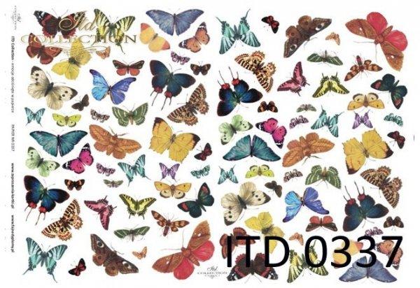 motyle-motylki-różnokolorowe-papier-decoupage-D0337M