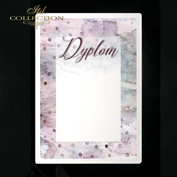 dyplom DS0206