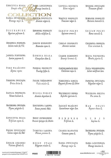 zioła po polsku i łacińsku*herbs in Polish and Latin*Kräuter auf Polnisch und Latein*hierbas en polaco y latín