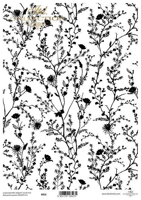 kwiaty*flowers*Blumen*flores