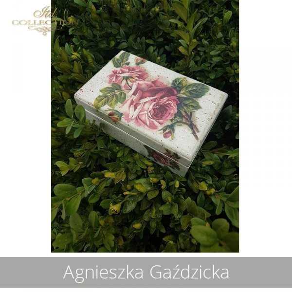 20190706-Agnieszka Gaździcka-R0222-example 04