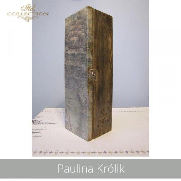 20190425-Paulina Królik-R1138-example 01